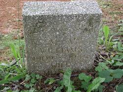 M A Williams