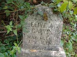 Elive A. Garvin