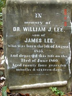 Dr William J. Lee