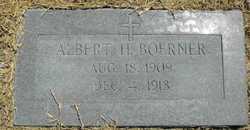 Albert H Boerner