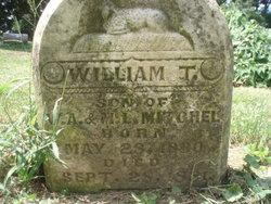 William T Mitchell