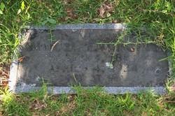 Samuel Edward Midgett