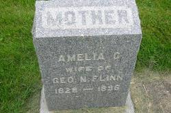 Amelia Gertrude <I>Hudson</I> Flinn