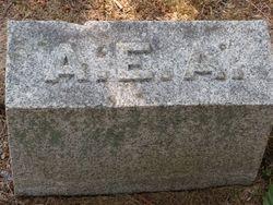 Augustus Eddy Allen