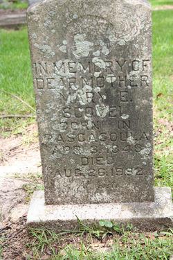 Mary E Scovel