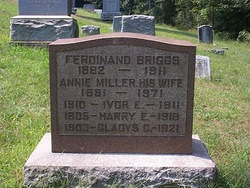 Harry Edward Briggs
