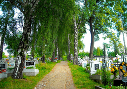 Mucharz Parish Cemetery