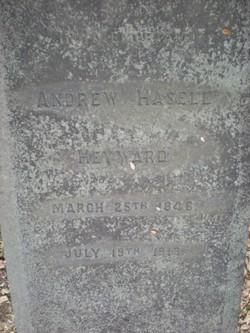 Pvt Andrew Hasell Heyward