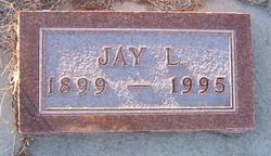 Jay L Rice