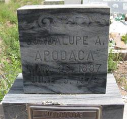 Guadalupe <I>Aragon</I> Apodaca