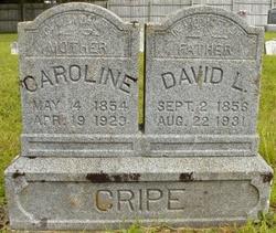 Caroline <I>Holsapple</I> Cripe