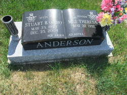 Stuart B Anderson
