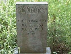 Alice <I>Hayman</I> Barnard