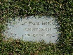 Ray Wayne Morgan