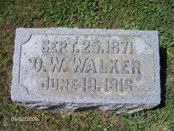 Ollie W Walker