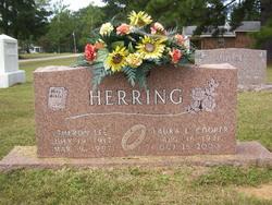 Laura Elizabeth <I>Cooper</I> Herring