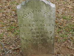 David T Bates