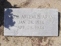Jacob Artemus Arant, Sr
