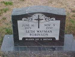 Seth Wayman Robinson