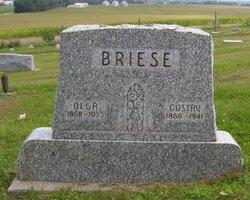 Gustav Wilhelm Max Briese