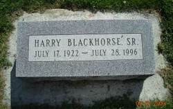 Harry Blackhorse, Sr