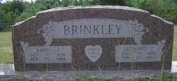 Amee Jane <I>James</I> Brinkley