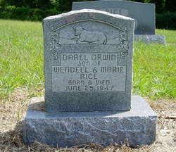 Darel Orwin Rice