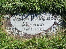 Brayan Rodriguez Alvarado