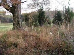 Joshua Adams Cemetery 163
