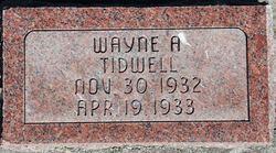 Wayne A Tidwell