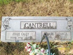 Sarah Elizabeth <I>Jones</I> Cantrell