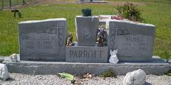 Walter J Parrott