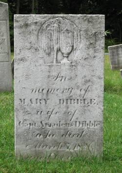 Mary <I>Mitchell</I> Dibble