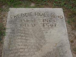 Freddie Holland