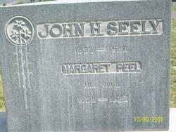 John Henry Seely