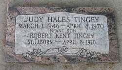 Robert Kent Tingey