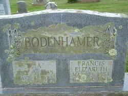 William Arthur Bodenhamer