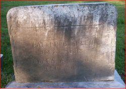 Walter C. Allen