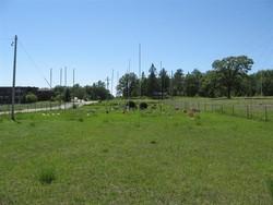 Free Gospel Alliance Cemetery