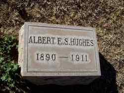 Albert E. S. Hughes