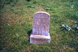 Walter D Turner