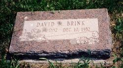 Rev David Munroe Brink