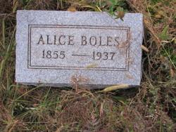 Alice <I>Hollenback</I> Boles