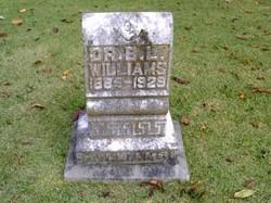 Dr B. L. Williams