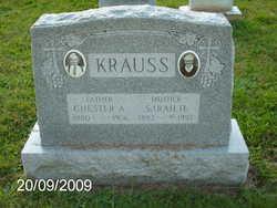 Sarah Hasson Krauss