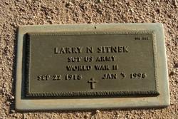 Larry N Sitnek