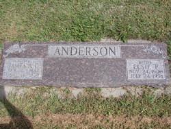 Elsie P. <I>Freeland</I> Anderson