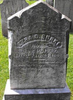 Ezra D Burke