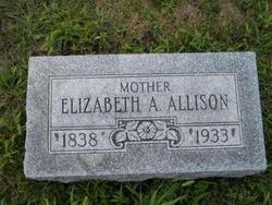 Elizabeth Ann <I>Smith</I> Allison