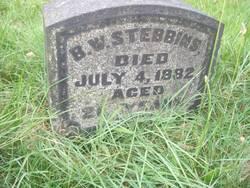 Benjamin Woodbury Stebbins
